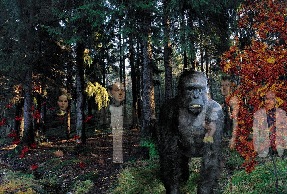 Windows-Gorilla